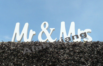 Handpainted Mr and Mrs Wedding Sign, Wedding Reception Sign, Wooden Sign, Wedding Signs,